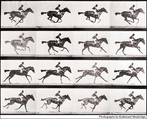 Horses Galloping, Circa the 1880s