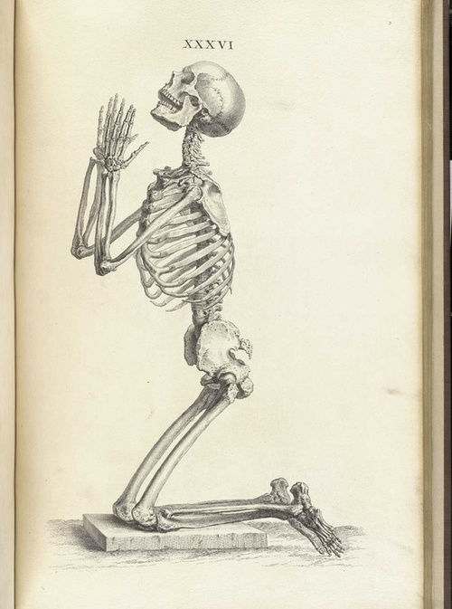 Praying Skeleton